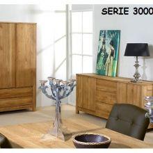 3000serie-1