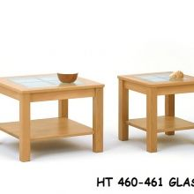 HT460-461-glas
